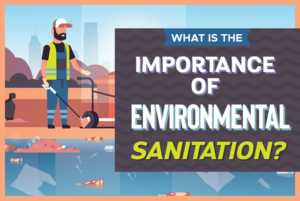 importance of environmental sanitation