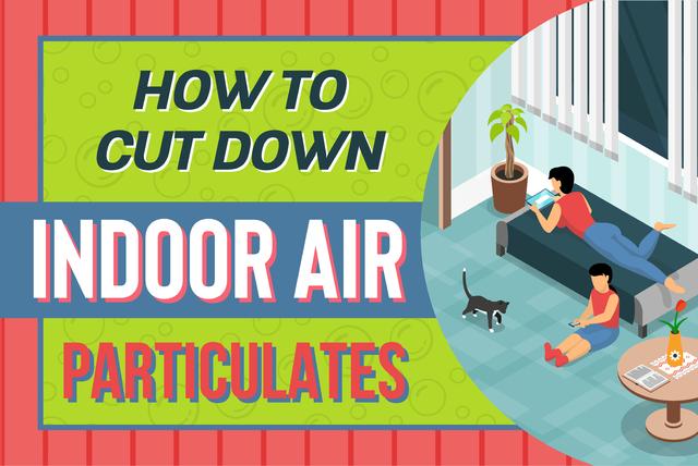 indoor air particulates