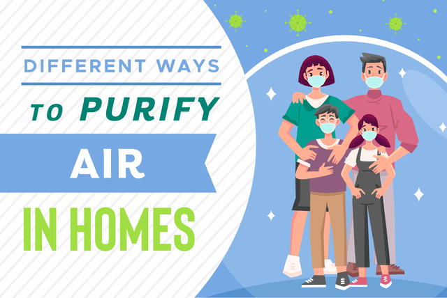 how to purify air in home